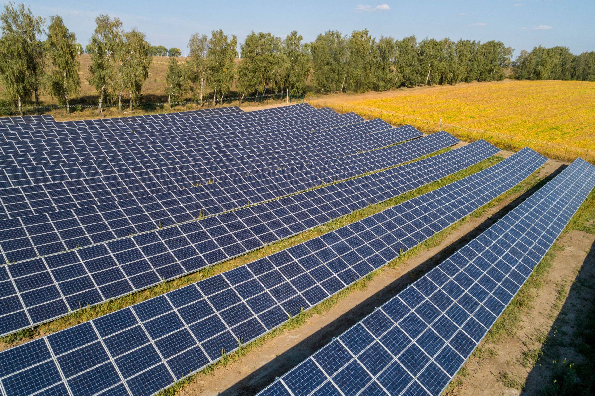 """Наземна фотоелектрична сонячна електростанція """"Лісові Гринівці"""""""